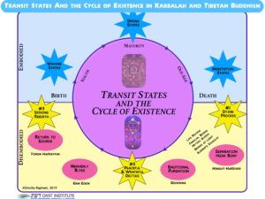 A purple circle in a field of blue and yellow with descriptors of the life and death process