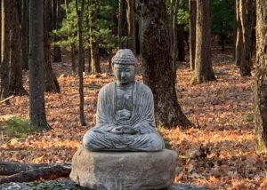 Stone Buddha Statue in the woods